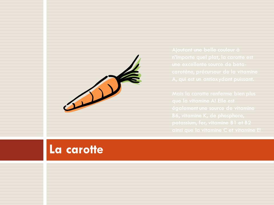 La carotte Ajoutant une belle couleur à nimporte quel plat, la carotte est une excellente source de beta- carotène, précurseur de la vitamine A, qui est un antioxydant puissant.