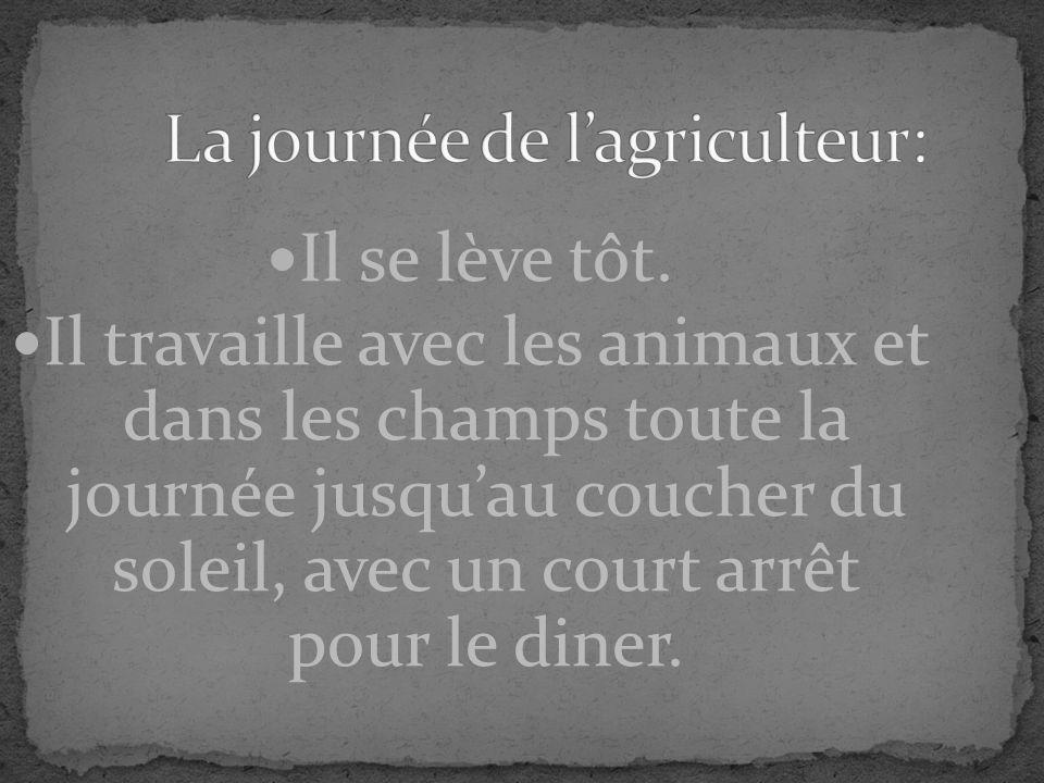 Le blé, Les pommes de terre, Lavoine, Le cheval, La vache, Le cochon, La poule, Le porc, Le bœuf.