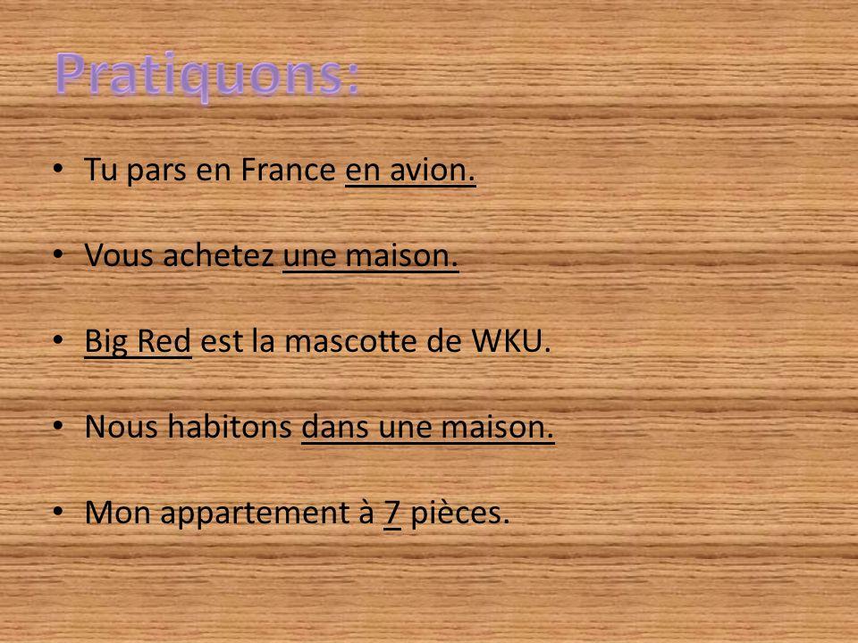 Tu pars en France en avion. Vous achetez une maison. Big Red est la mascotte de WKU. Nous habitons dans une maison. Mon appartement à 7 pièces.