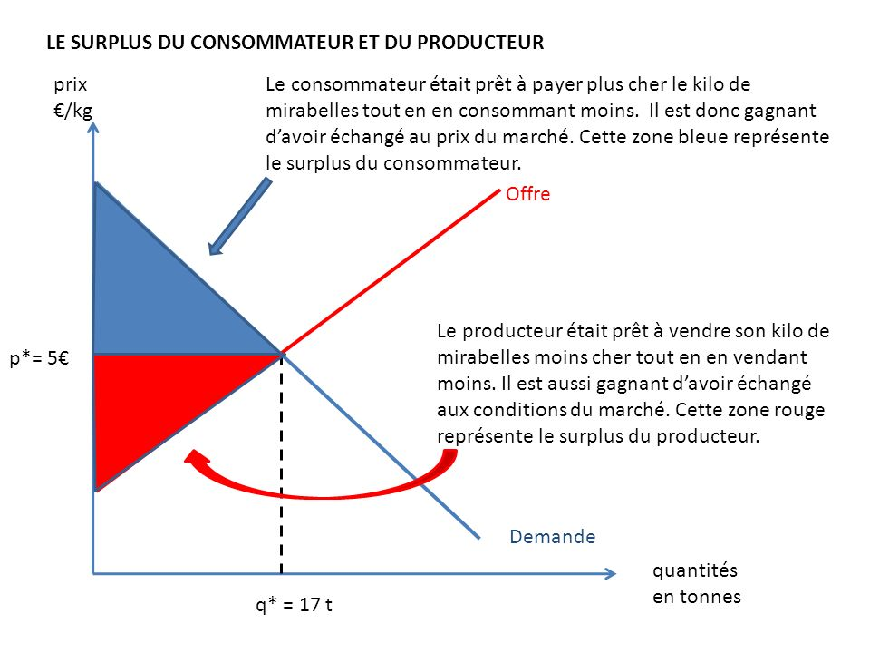 Offre Demande LE SURPLUS DU CONSOMMATEUR ET DU PRODUCTEUR p*= 5 q* = 17 t prix /kg quantités en tonnes Le consommateur était prêt à payer plus cher le