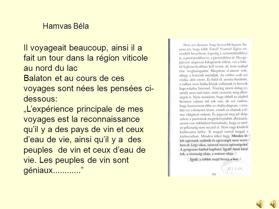 Hamvas Béla Il voyageait beaucoup, ainsi il a fait un tour dans la région viticole au nord du lac Balaton et au cours de ces voyages sont nées les pen