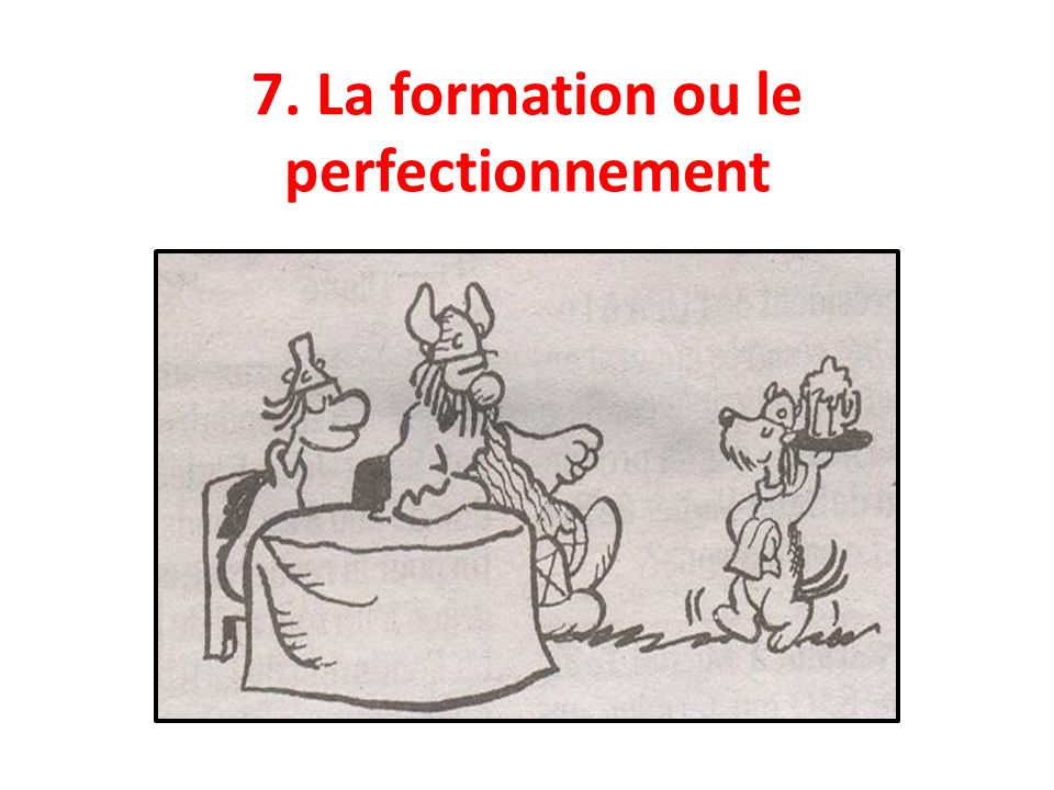 7. La formation ou le perfectionnement