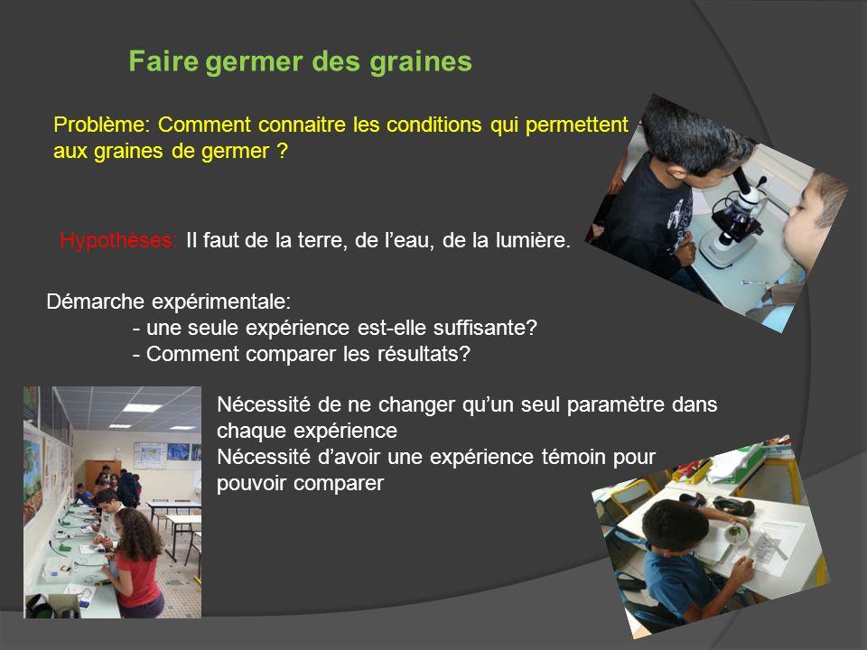Faire germer des graines Problème: Comment connaitre les conditions qui permettent aux graines de germer ? Hypothèses: Il faut de la terre, de leau, d