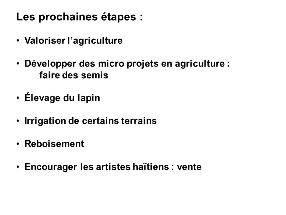 Les prochaines étapes : Valoriser lagriculture Développer des micro projets en agriculture : faire des semis Élevage du lapin Irrigation de certains t