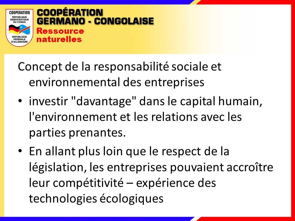 Ressource naturelles Concept de la responsabilité sociale et environnemental des entreprises investir davantage dans le capital humain, l environnement et les relations avec les parties prenantes.