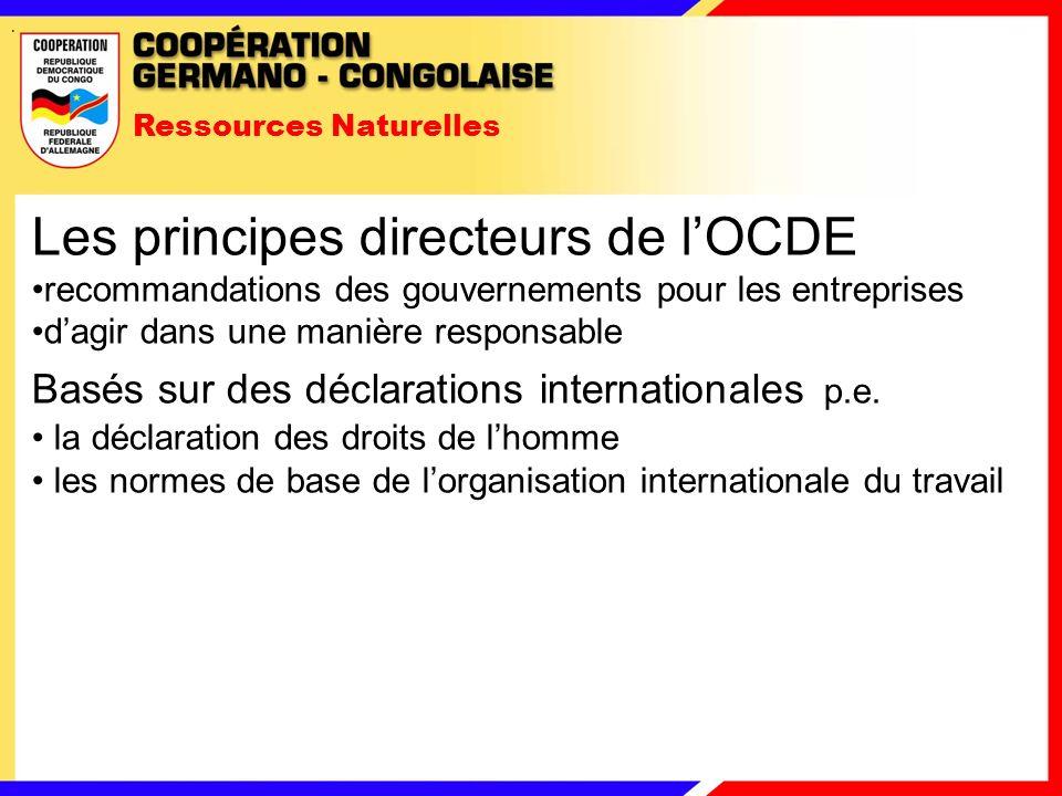 Ressources Naturelles Les principes directeurs de lOCDE recommandations des gouvernements pour les entreprises dagir dans une manière responsable Basés sur des déclarations internationales p.e.