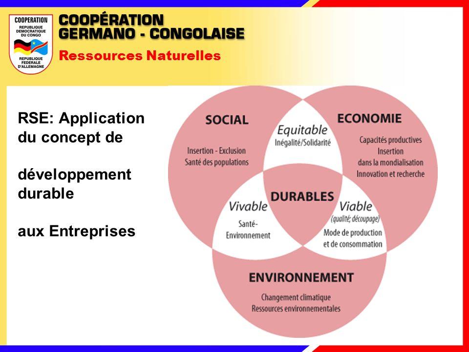 Ressources Naturelles RSE: Application du concept de développement durable aux Entreprises