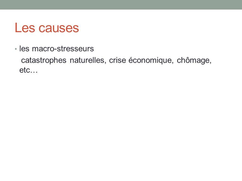 Les causes les macro-stresseurs catastrophes naturelles, crise économique, chômage, etc…
