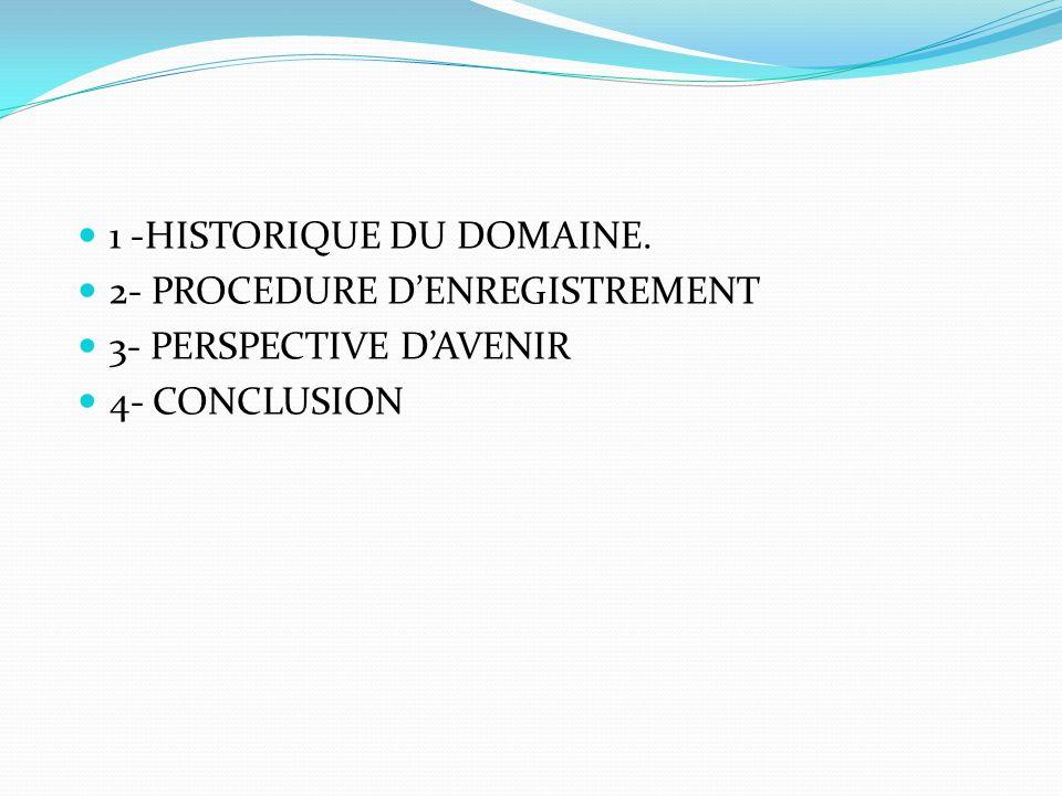 1 -HISTORIQUE DU DOMAINE. 2- PROCEDURE DENREGISTREMENT 3- PERSPECTIVE DAVENIR 4- CONCLUSION