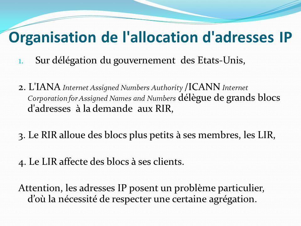 RIR ( Registres Internet Régionaux) Missions – Allocation des adresses IP (IPv4 et IPv6) et des numéros dAS aux registres locaux (LIR) – Coordination des déploiements des réseaux et des services IP dans la région – Collaboration avec lIANA/ICANN pour une meilleure politique de délégation des blocs dadresses IP et de numéros dAS vers les RIR Les 5 RIR – AFRINIC (Afrique + océan indien), APNIC (Asie – Pacifique), ARIN (Amérique du nord), LACNIC (Amériques Latine – Caraïbes), RIPE NCC (Europe – Moyen Orient – Asie centrale) – http://{afrinic,apnic,arin,lacnic,ripe}.net/ Le NRO (« Number Resource Organisation » : « Coalition » des 5 RIR – Pour élaborer des politiques communes (règles dallocation de ressources…) – Pour négocier dune seule voix avec lIANA/ICANN, ITU, IGF – http://www.nro.net/