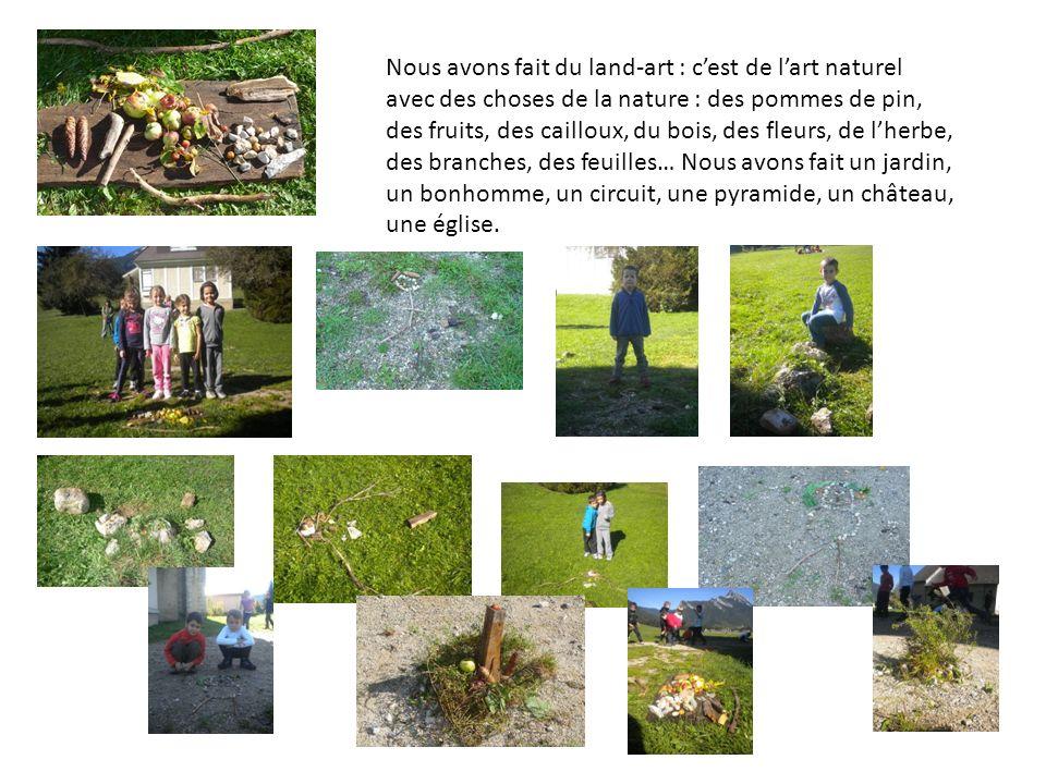 Nous avons fait du land-art : cest de lart naturel avec des choses de la nature : des pommes de pin, des fruits, des cailloux, du bois, des fleurs, de