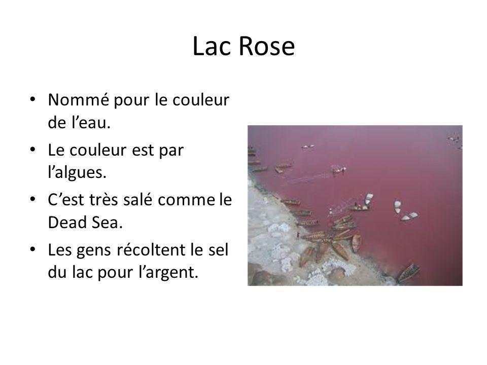 Lac Rose Nommé pour le couleur de leau. Le couleur est par lalgues. Cest très salé comme le Dead Sea. Les gens récoltent le sel du lac pour largent.