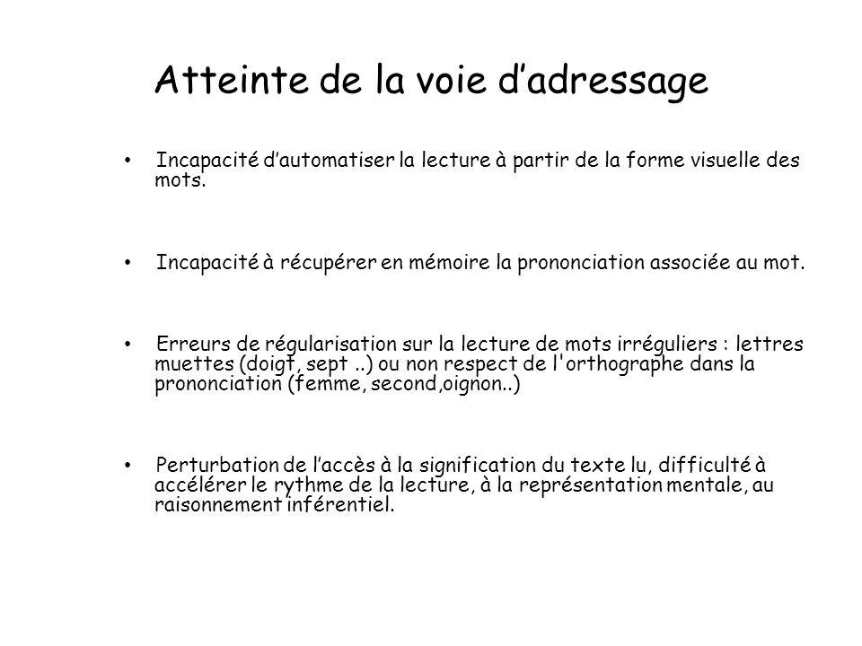 Atteinte de la voie dadressage Incapacité dautomatiser la lecture à partir de la forme visuelle des mots.
