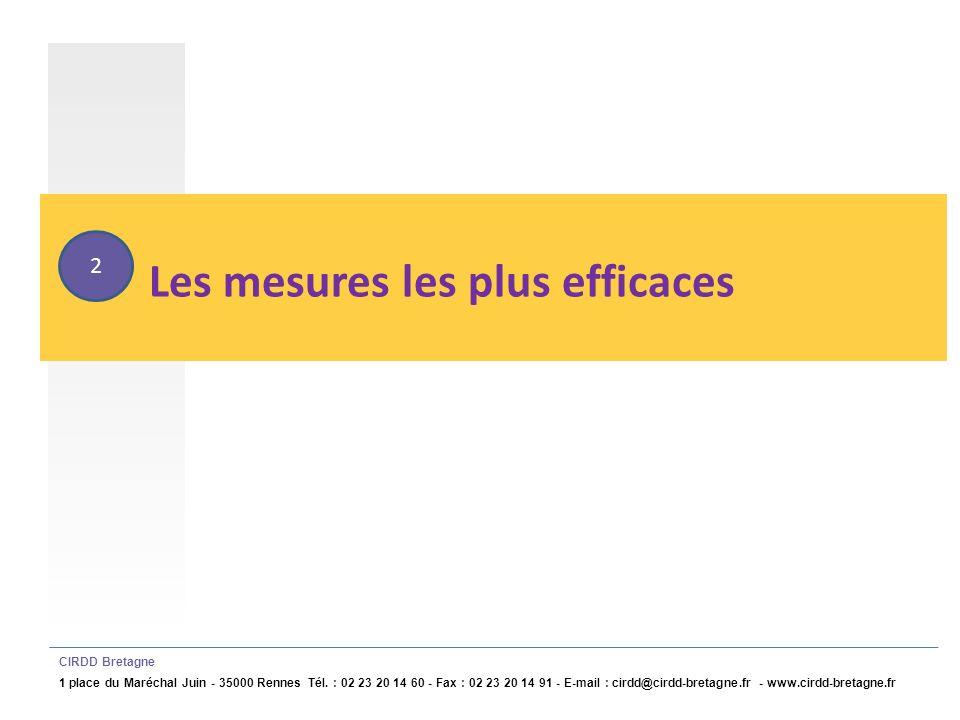 Mesures structurelles les plus efficaces CIRDD Bretagne 1 place du Maréchal Juin - 35000 Rennes Tél.