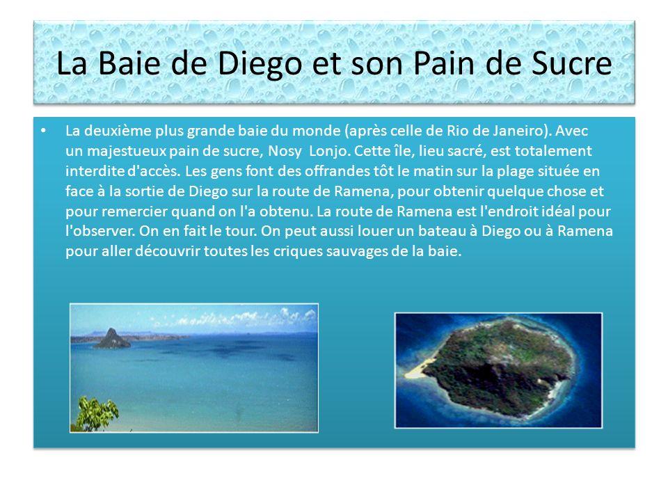 La Baie de Diego et son Pain de Sucre La deuxième plus grande baie du monde (après celle de Rio de Janeiro). Avec un majestueux pain de sucre, Nosy Lo