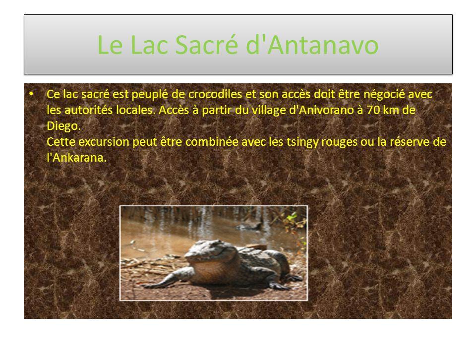 Le Lac Sacré d'Antanavo Ce lac sacré est peuplé de crocodiles et son accès doit être négocié avec les autorités locales. Accès à partir du village d'A