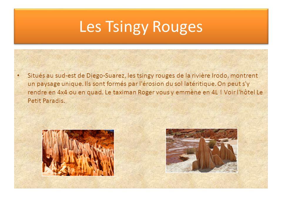 Les Tsingy Rouges Situés au sud-est de Diego-Suarez, les tsingy rouges de la rivière Irodo, montrent un paysage unique. Ils sont formés par l'érosion