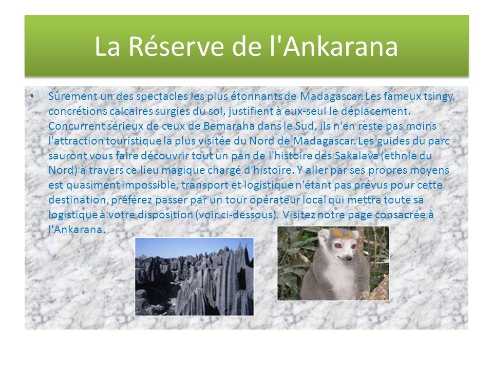 La Réserve de l'Ankarana Sûrement un des spectacles les plus étonnants de Madagascar. Les fameux tsingy, concrétions calcaires surgies du sol, justifi