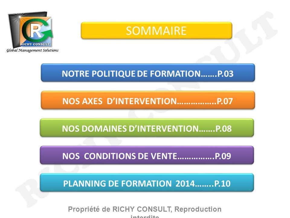 RICHY CONSULT SOMMAIRE NOTRE POLITIQUE DE FORMATION…….P.03 NOS AXES DINTERVENTION……………..P.07 NOS DOMAINES DINTERVENTION…….P.08 NOS CONDITIONS DE VENTE…………….P.09 PLANNING DE FORMATION 2014……..P.10 Global Management Solutions Propriété de RICHY CONSULT, Reproduction interdite