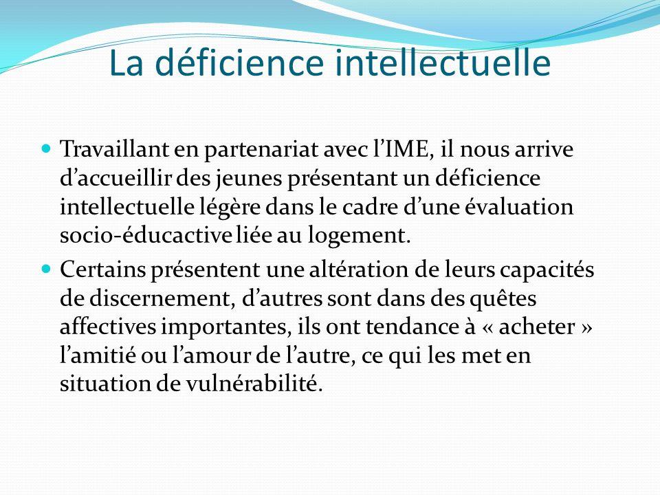 La déficience intellectuelle Travaillant en partenariat avec lIME, il nous arrive daccueillir des jeunes présentant un déficience intellectuelle légèr