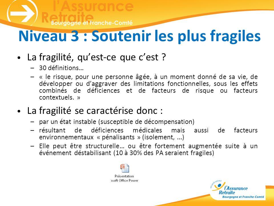 Niveau 3 : Soutenir les plus fragiles La fragilité, quest-ce que cest ? –30 définitions… –« le risque, pour une personne âgée, à un moment donné de sa