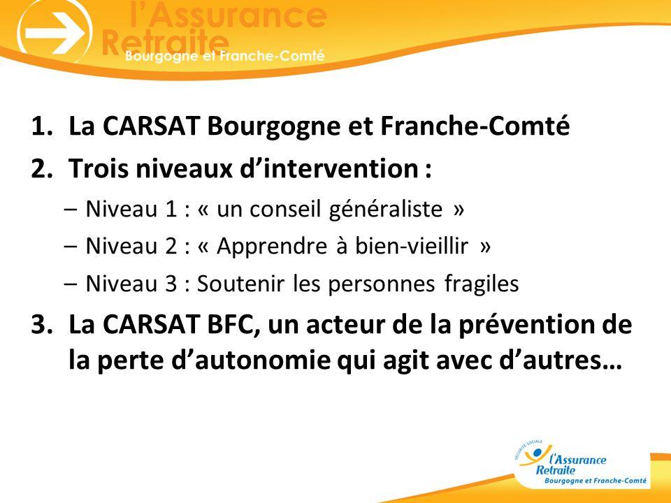1.La CARSAT Bourgogne et Franche-Comté 2.Trois niveaux dintervention : –Niveau 1 : « un conseil généraliste » –Niveau 2 : « Apprendre à bien-vieillir