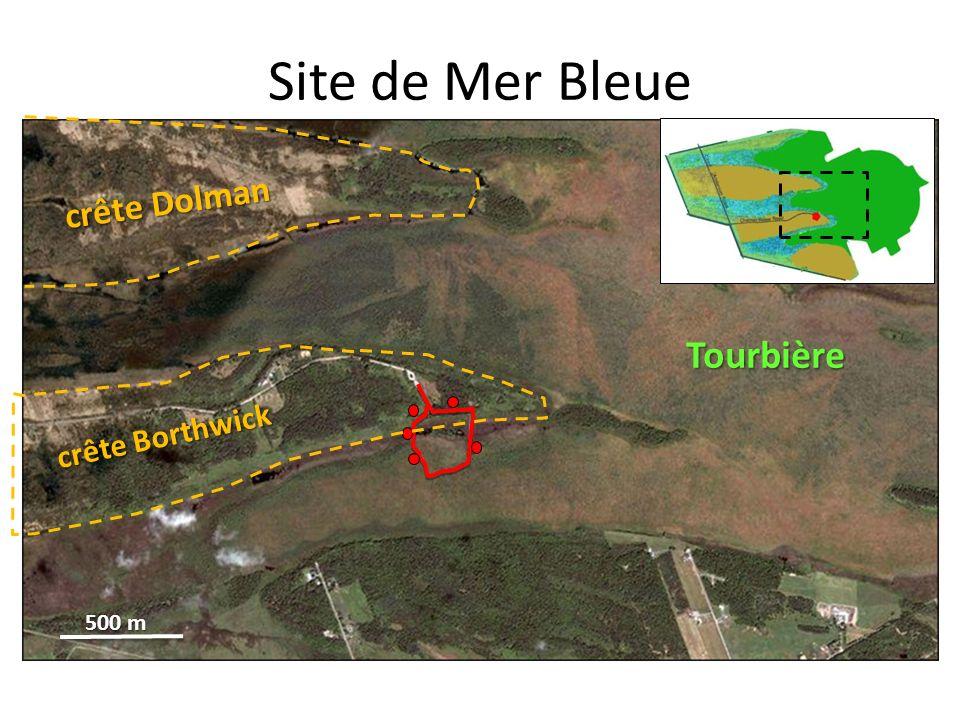 Site de Mer Bleue crête Dolman crête Borthwick Tourbière 500 m