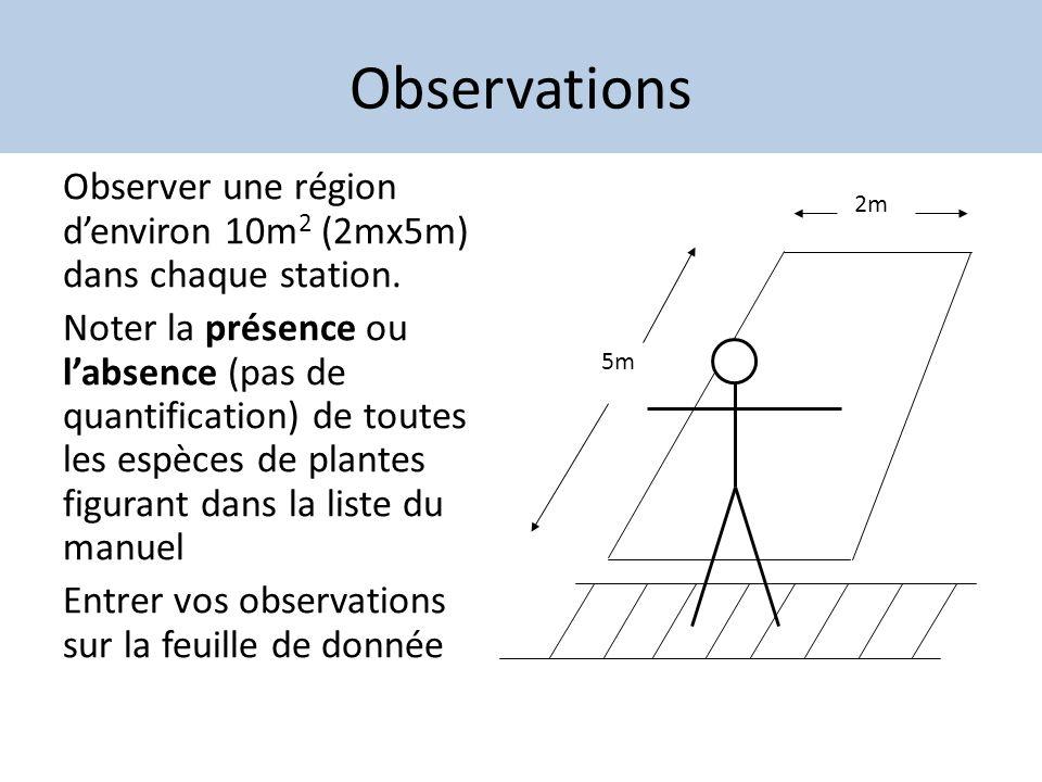 Observations Observer une région denviron 10m 2 (2mx5m) dans chaque station. Noter la présence ou labsence (pas de quantification) de toutes les espèc