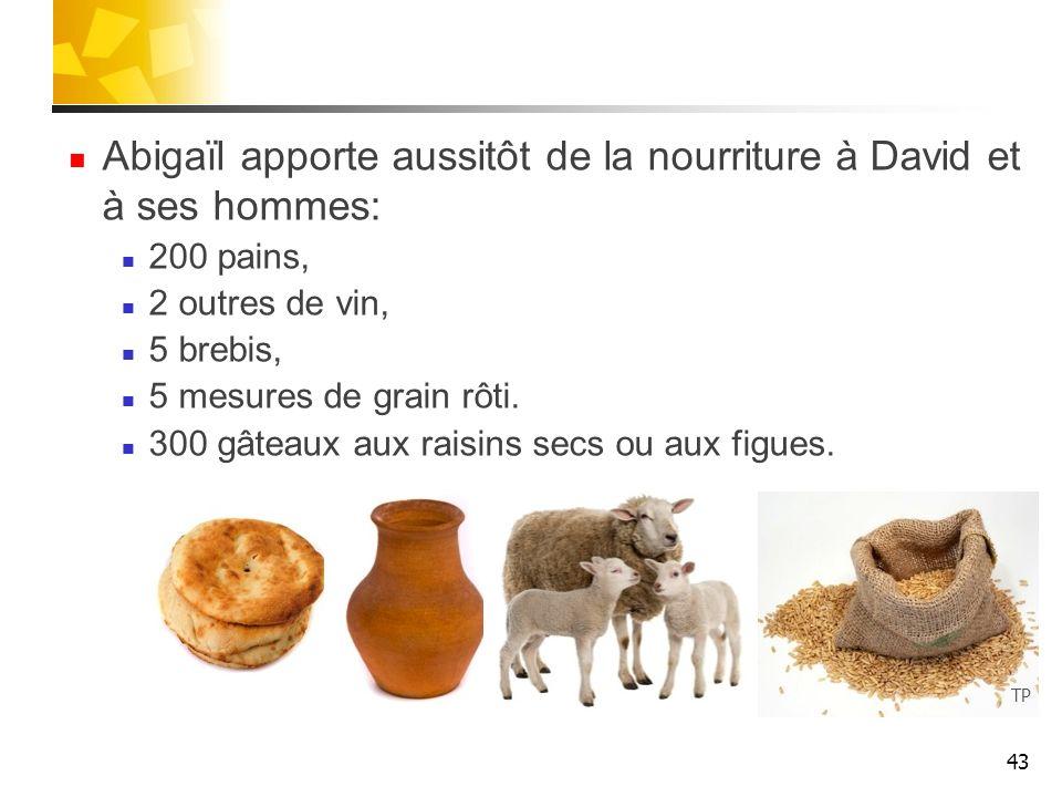 Abigaïl apporte aussitôt de la nourriture à David et à ses hommes: 200 pains, 2 outres de vin, 5 brebis, 5 mesures de grain rôti. 300 gâteaux aux rais