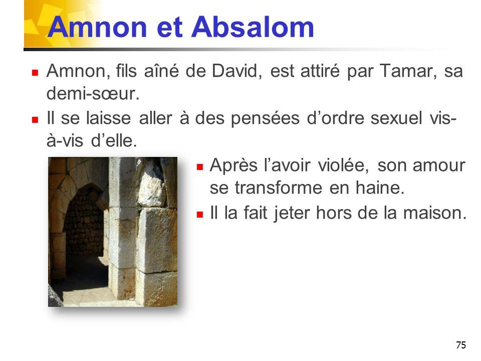 Amnon et Absalom Amnon, fils aîné de David, est attiré par Tamar, sa demi-sœur. Il se laisse aller à des pensées dordre sexuel vis- à-vis delle. Après