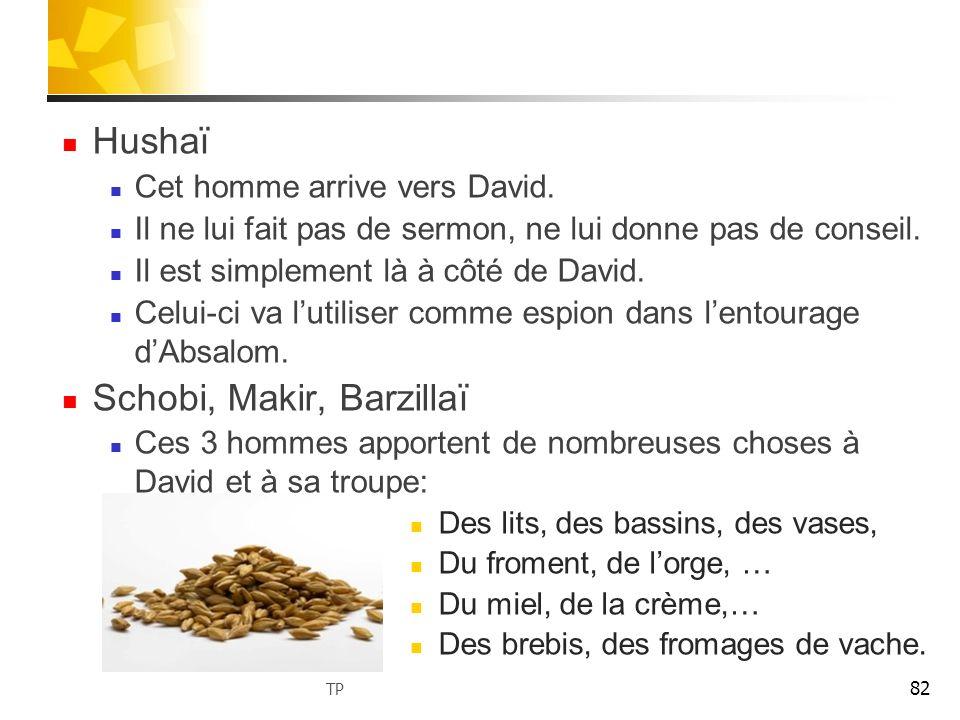 Hushaï Cet homme arrive vers David. Il ne lui fait pas de sermon, ne lui donne pas de conseil. Il est simplement là à côté de David. Celui-ci va lutil
