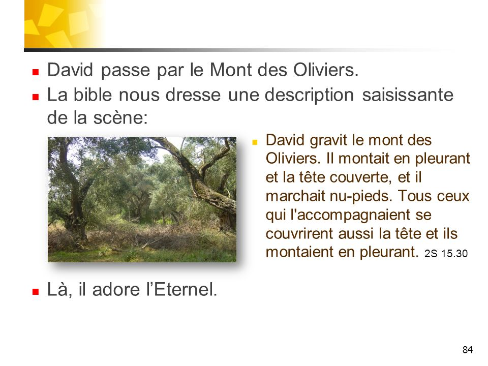 David passe par le Mont des Oliviers. La bible nous dresse une description saisissante de la scène: David gravit le mont des Oliviers. Il montait en p