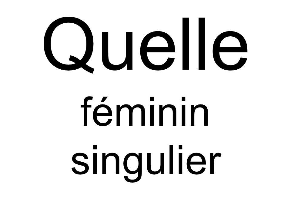 Quelle féminin singulier