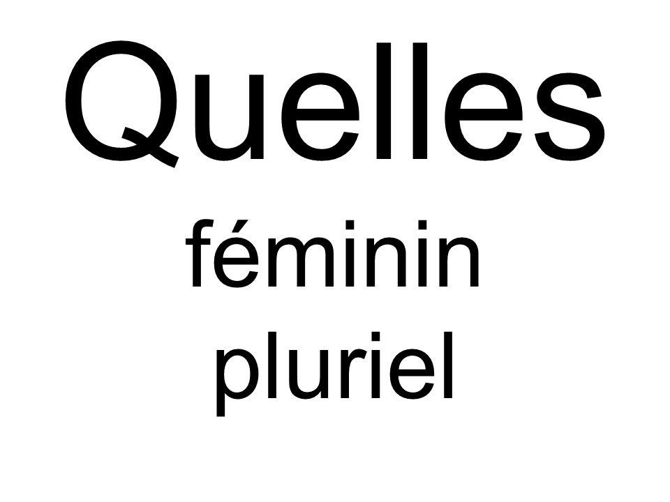 Quelles féminin pluriel