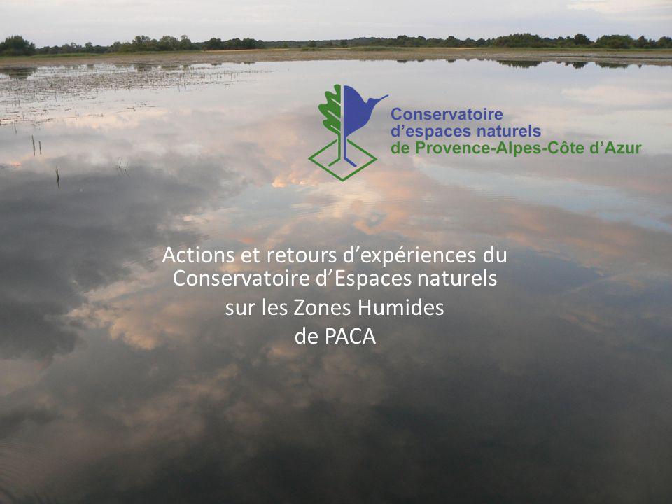Actions et retours dexpériences du Conservatoire dEspaces naturels sur les Zones Humides de PACA