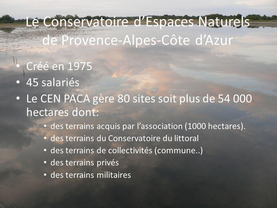 Le Conservatoire dEspaces Naturels de Provence-Alpes-Côte dAzur Créé en 1975 45 salariés Le CEN PACA gère 80 sites soit plus de 54 000 hectares dont:
