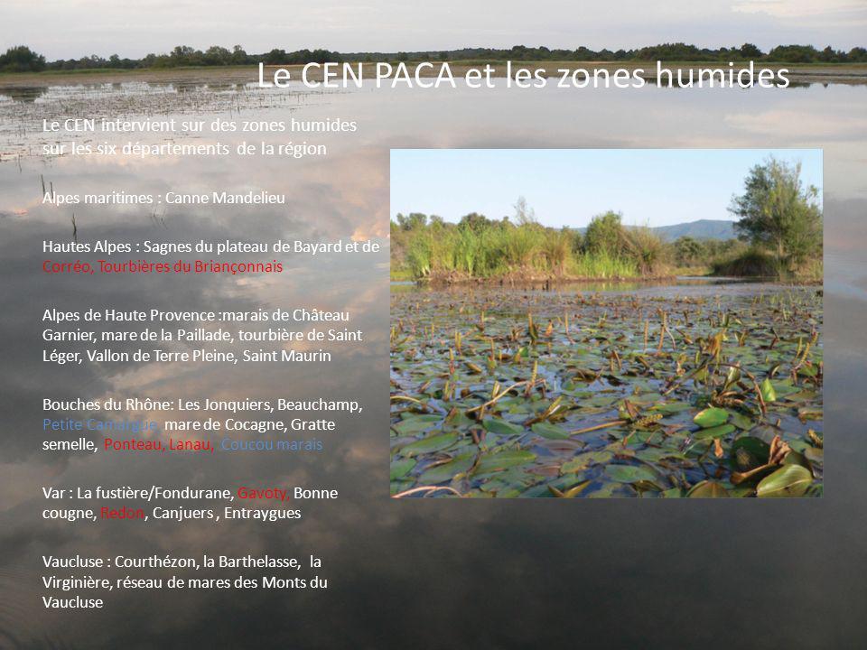 Le CEN PACA et les zones humides Le CEN intervient sur des zones humides sur les six départements de la région Alpes maritimes : Canne Mandelieu Haute