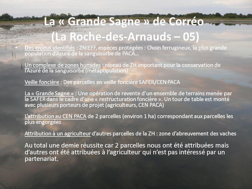 La « Grande Sagne » de Corréo (La Roche-des-Arnauds – 05) Des enjeux identifiés : ZNIEFF, espèces protégées : Choin ferrugineux, la plus grande popula