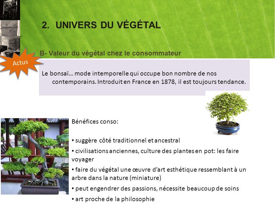 2.UNIVERS DU VÉGÉTAL Le bonsaï… mode intemporelle qui occupe bon nombre de nos contemporains.