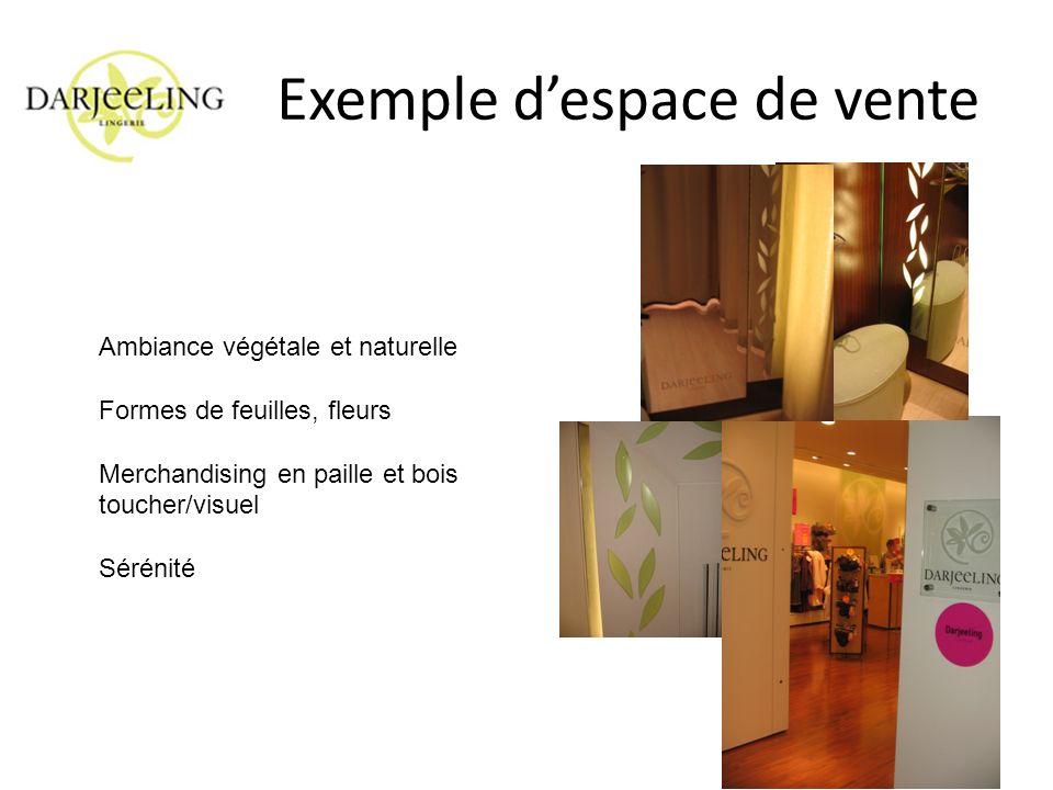 Exemple despace de vente Ambiance végétale et naturelle Formes de feuilles, fleurs Merchandising en paille et bois toucher/visuel Sérénité