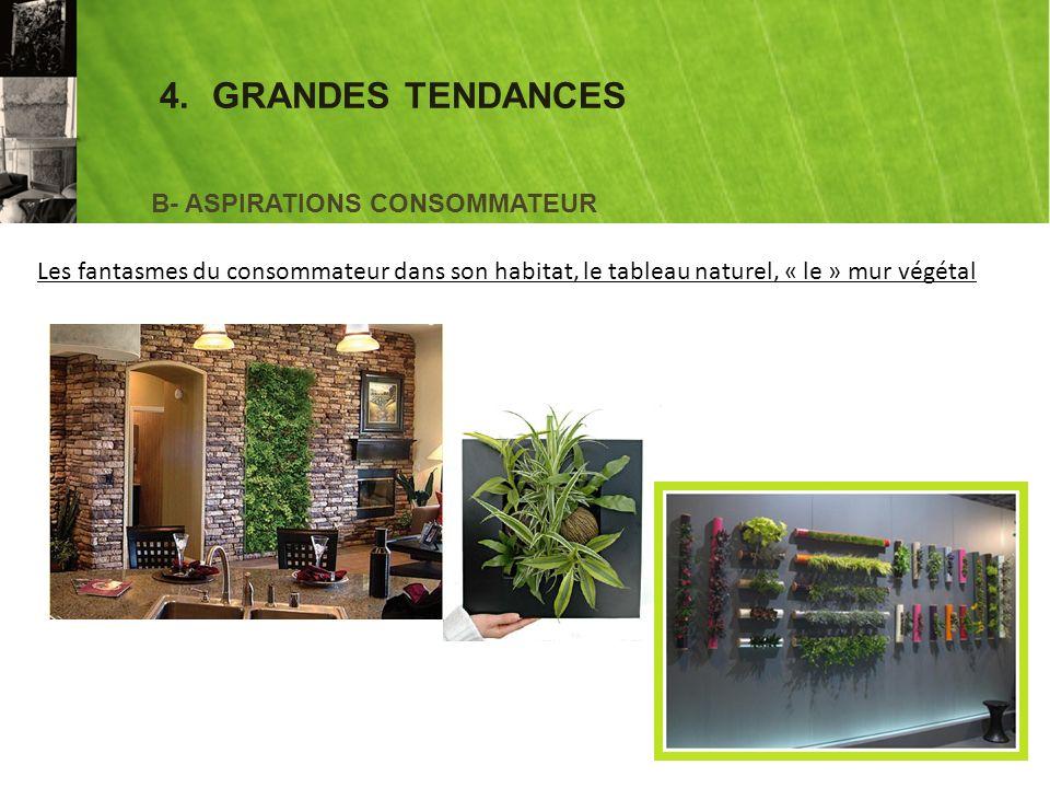 4.GRANDES TENDANCES B- ASPIRATIONS CONSOMMATEUR Les fantasmes du consommateur dans son habitat, le tableau naturel, « le » mur végétal