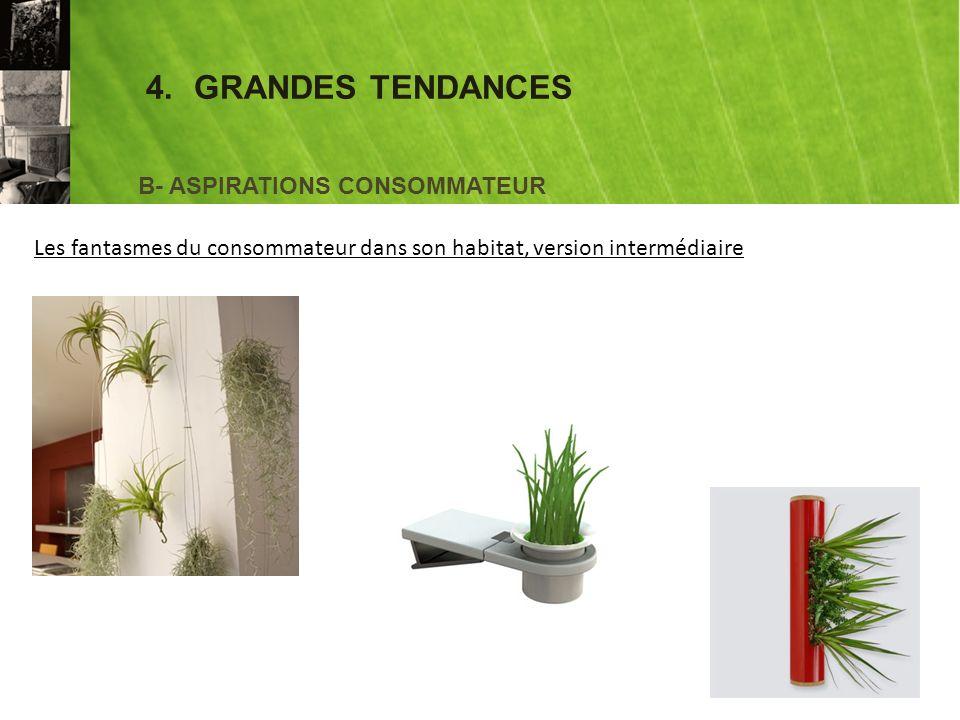 4.GRANDES TENDANCES B- ASPIRATIONS CONSOMMATEUR Les fantasmes du consommateur dans son habitat, version intermédiaire