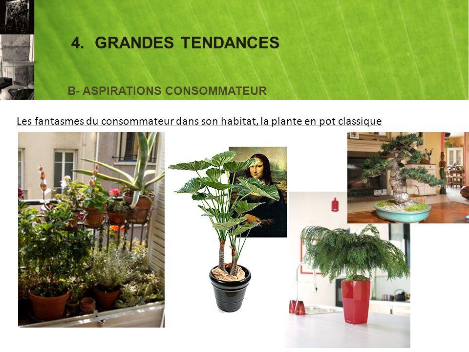 4.GRANDES TENDANCES B- ASPIRATIONS CONSOMMATEUR Les fantasmes du consommateur dans son habitat, la plante en pot classique