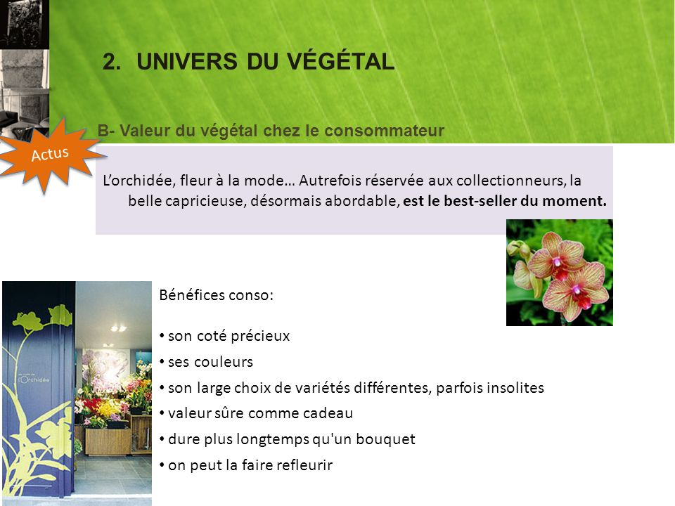 2.UNIVERS DU VÉGÉTAL Lorchidée, fleur à la mode… Autrefois réservée aux collectionneurs, la belle capricieuse, désormais abordable, est le best-seller du moment.