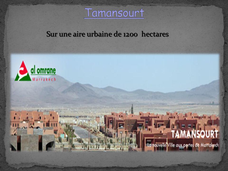Sur une aire urbaine de 1200 hectares