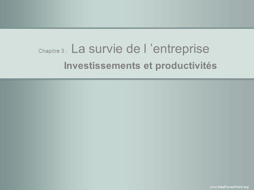 Chapitre 3 : La survie de l entreprise Investissements et productivités