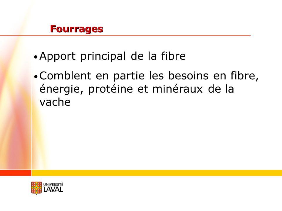 Apport principal de la fibre Comblent en partie les besoins en fibre, énergie, protéine et minéraux de la vache Fourrages