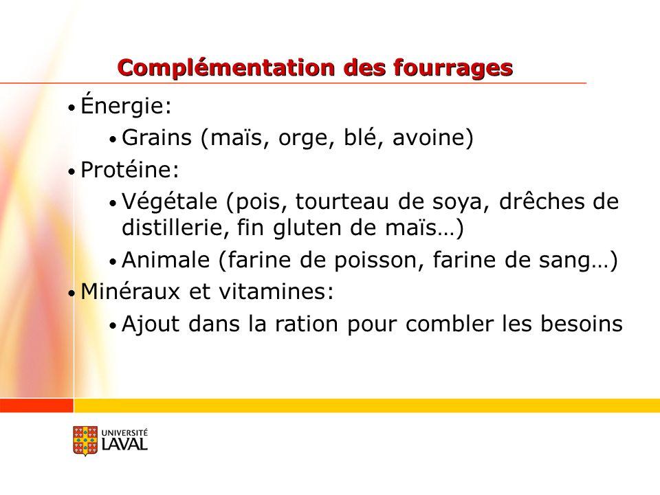 Énergie: Grains (maïs, orge, blé, avoine) Protéine: Végétale (pois, tourteau de soya, drêches de distillerie, fin gluten de maïs…) Animale (farine de poisson, farine de sang…) Minéraux et vitamines: Ajout dans la ration pour combler les besoins Complémentation des fourrages