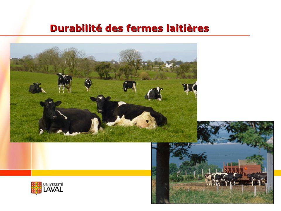 Durabilité des fermes laitières