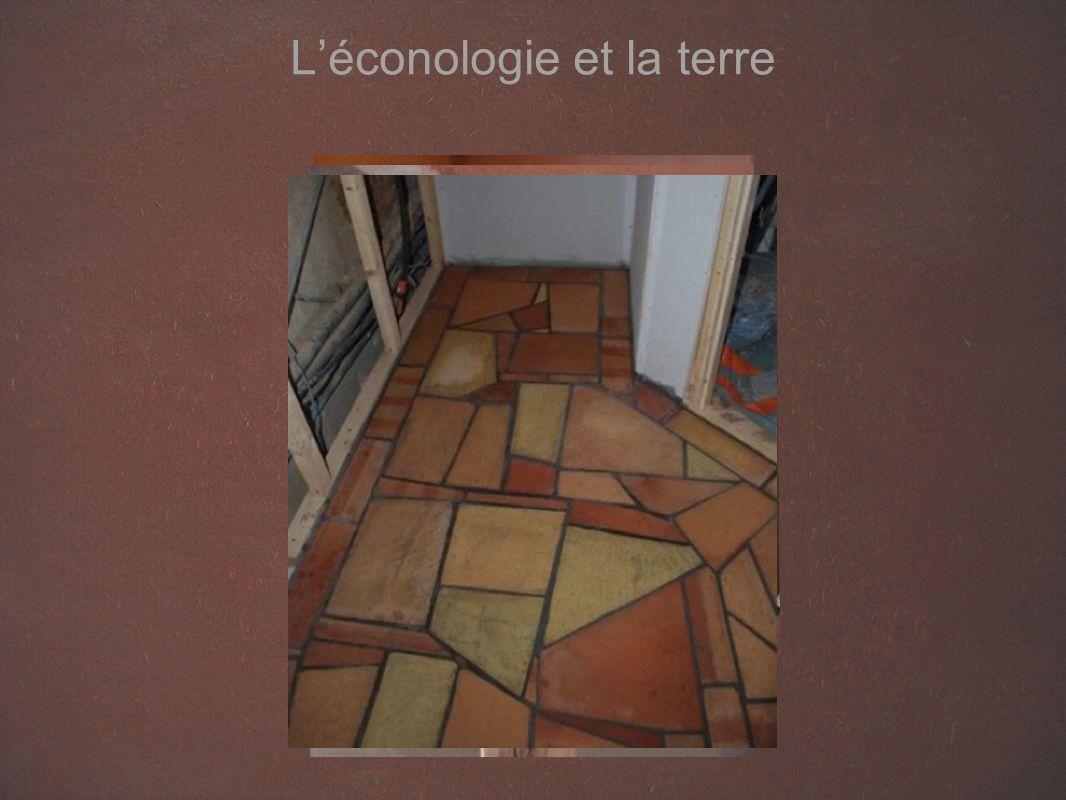 Léconologie et la terre